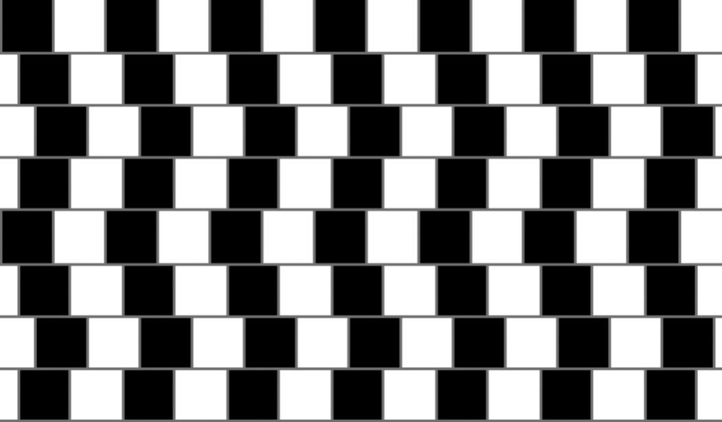 The new optical illusion test to diagnose schizophrenia